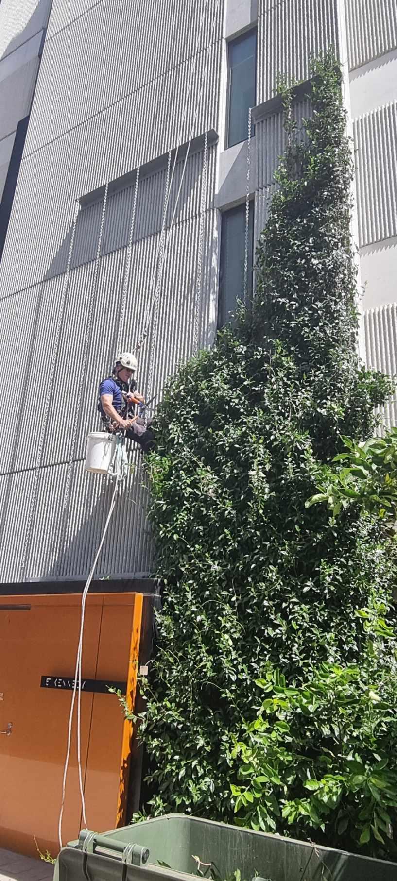 building maintenance services studio nine bendigo st richmond